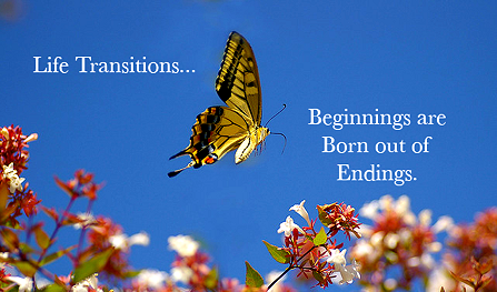 Life Transistions